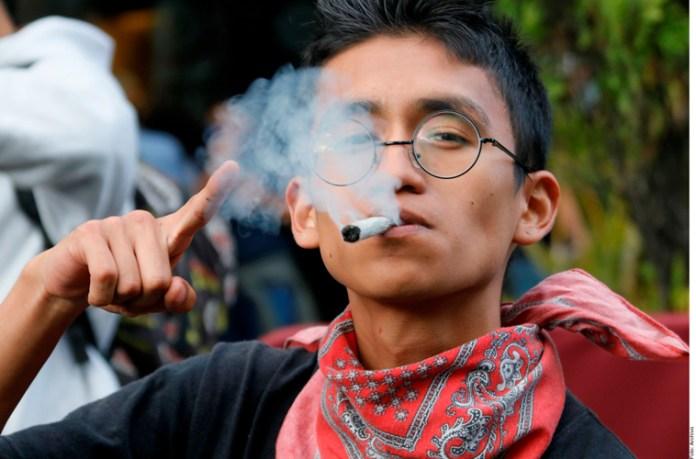Entra en vigor, por fin, uso medicinal de cannabis