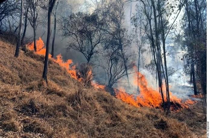Crecen incendios; recortan personal