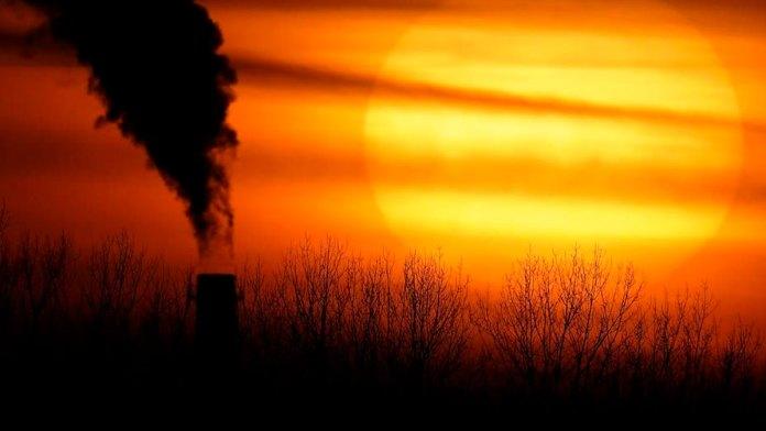 Alarma mortalidad por calentamiento