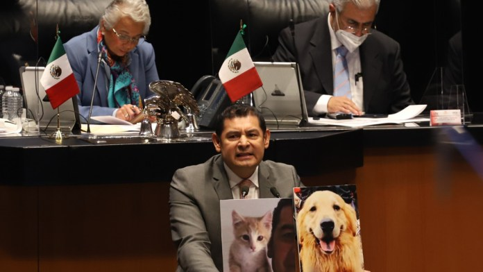 Aprueban en Senado reforma a favor de animales