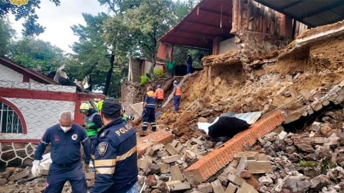 Mueren cinco perros tras deslizamiento de tierra