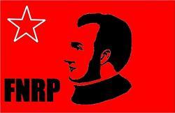 Honduras: ¡Tareas políticas inmediatas dentro del FNRP!