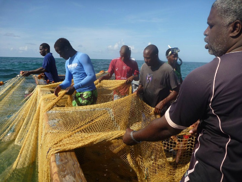 Code of conduct needed for ocean conservation, study says