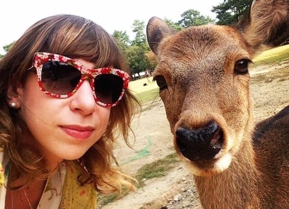 Dicas do Japão - veados de Nara