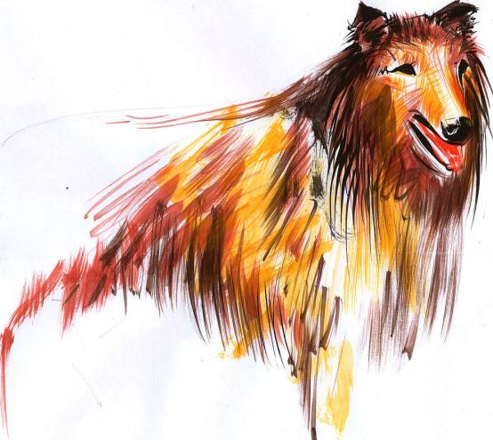 Lucian-Strochi-Cainele-ilustratie-de-George-Romila