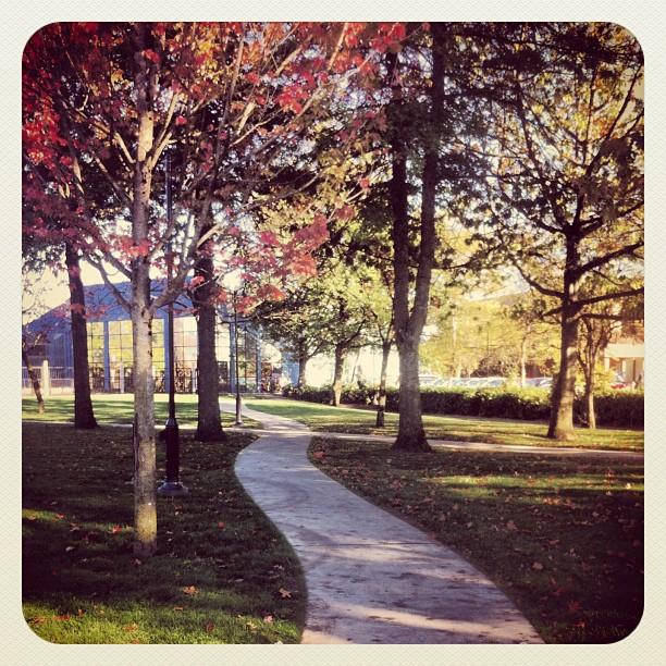 New park alley to Maple Ridge Leisure Center