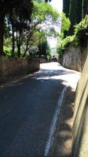 Auf dem Weg zur Fondazione Lisio - On the way to Fondazione Lisio