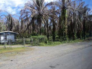 traveling in san jose costa rica