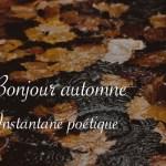 Bonjour automne - Carnet de recherches de Lucie Choupaut