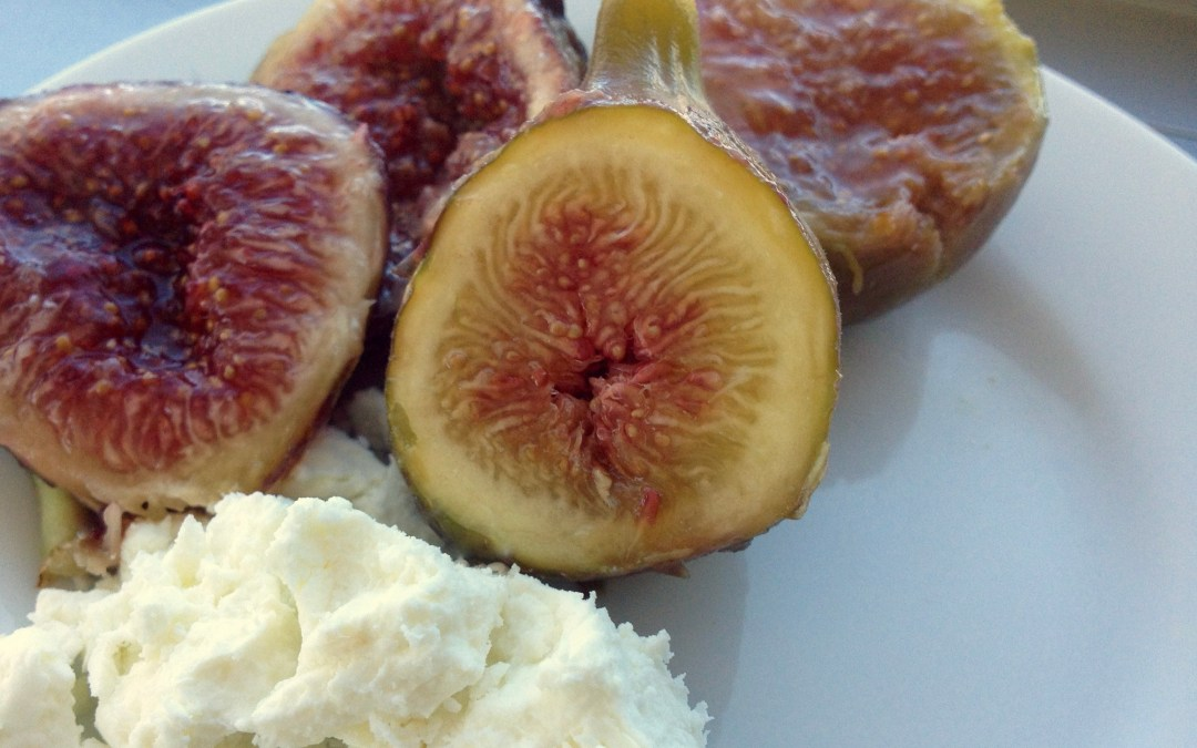 Fresh figs and Goats Cheese- LuciFit