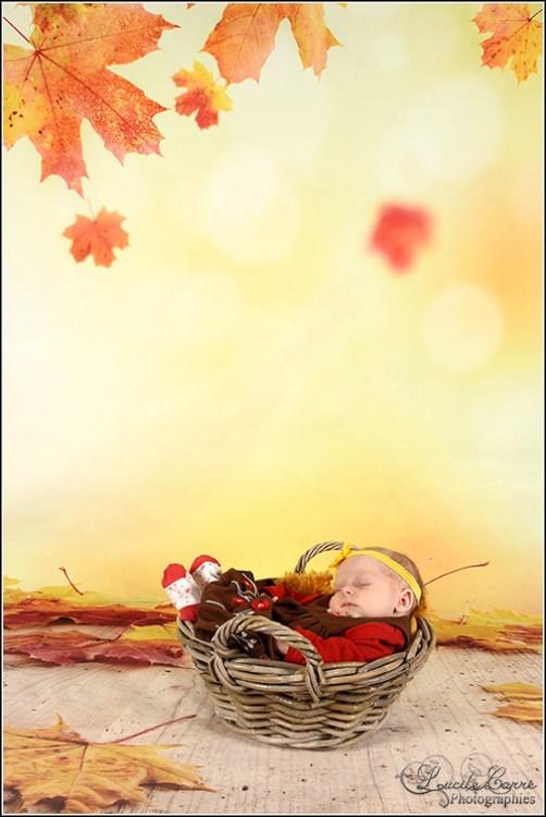 naissance-automne