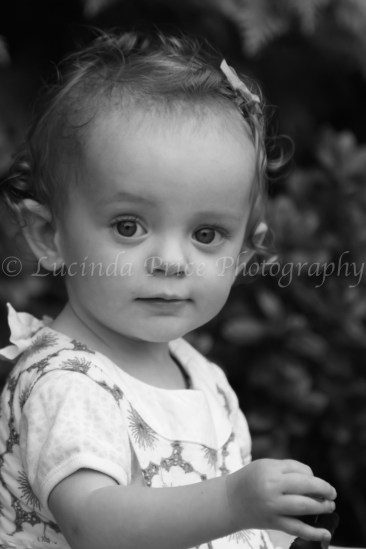 Lucinda price photography children's