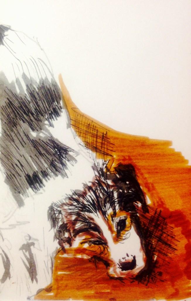 Pooch off colour, watercolour, 5 x 11 cm
