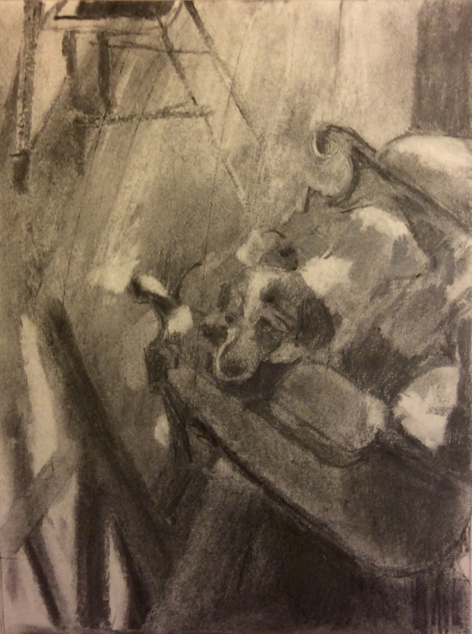 Spring snooze, charcoal on paper.