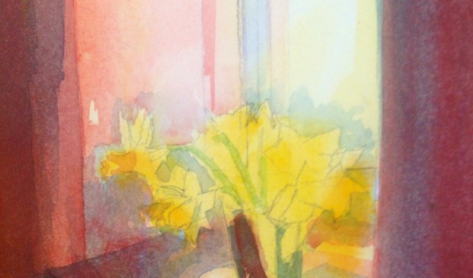Afternoon Daffodils.