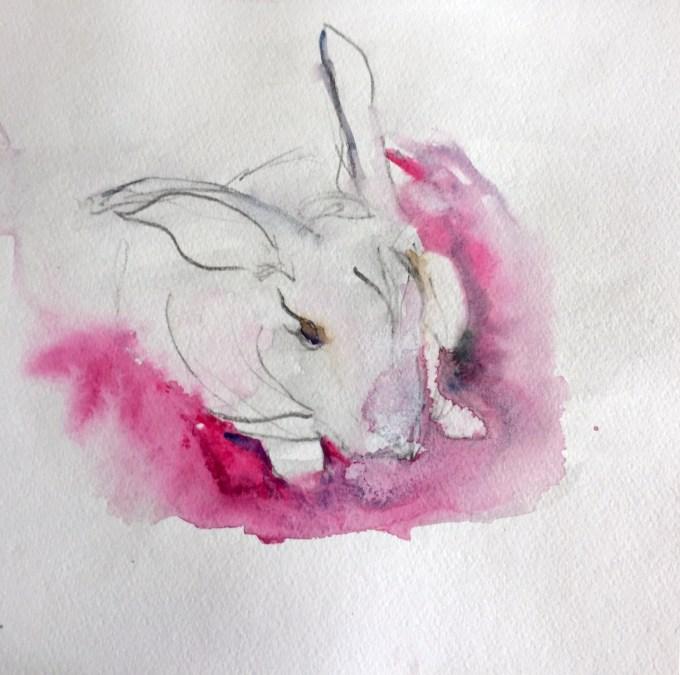Rex, watercolour, 22 x 15 cm