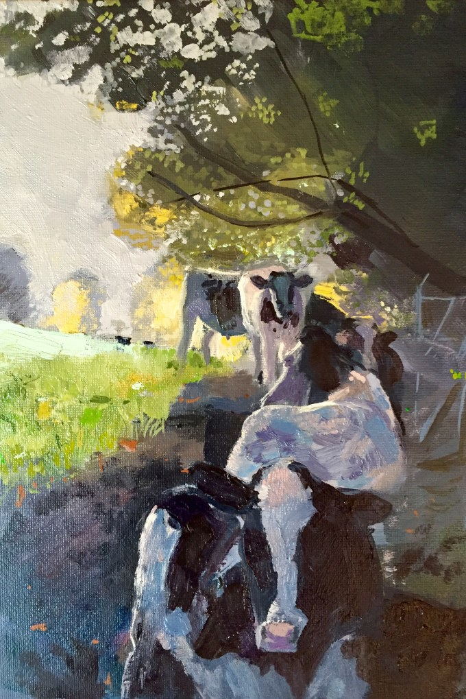Cattle in Morning Sunlight, Oil on Board, 18 x 25 cm