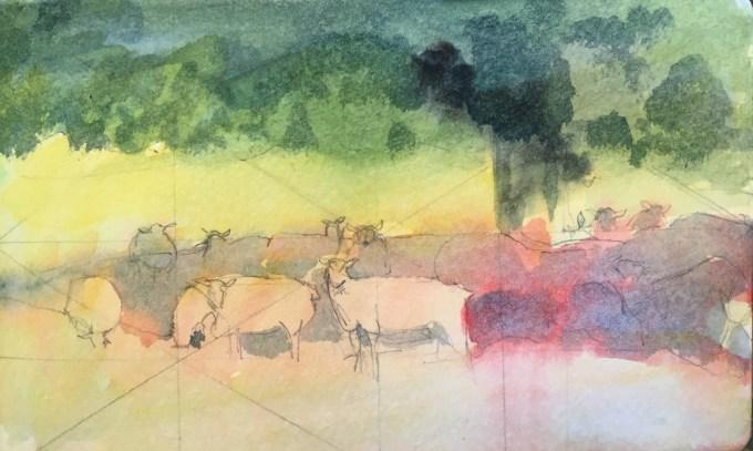 Sheep in shade, watercolour sketch