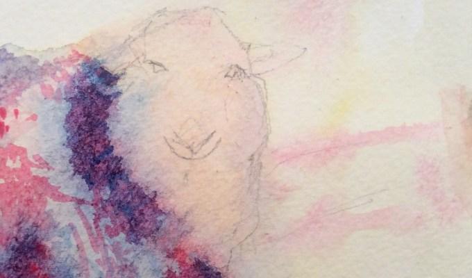 November ewe