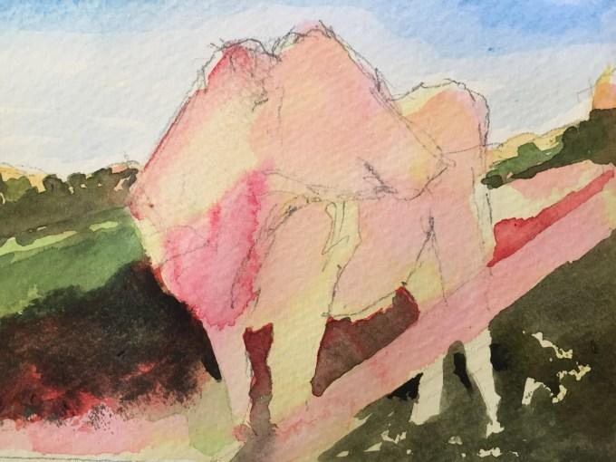 November Cow