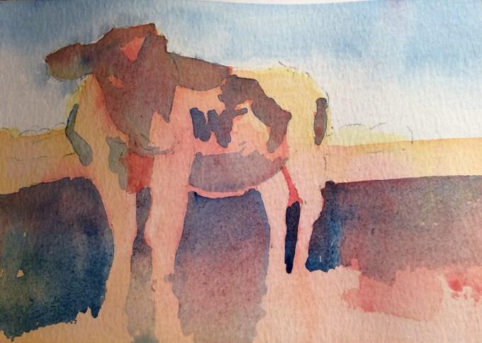Cow, December