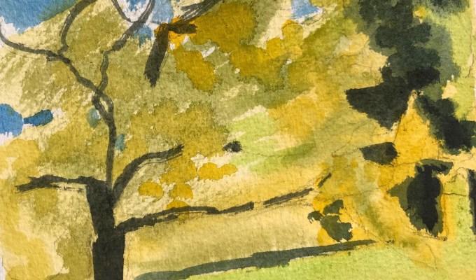Oak in May