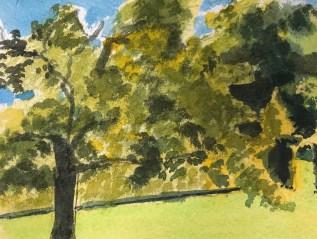 Oak in May III
