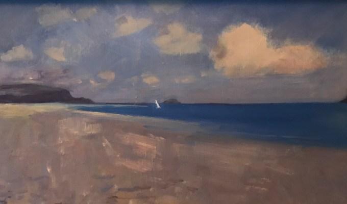 Pentire,Polzeath, Cornwall, detail