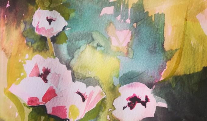 Pale Pink Poppies, Watercolour.