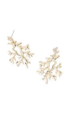 reef earrings