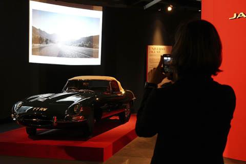 Jaguar at La casa degli italini