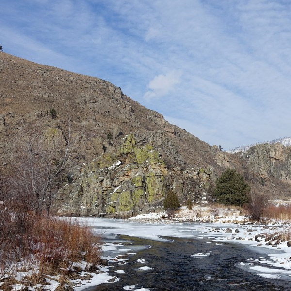 Photos from the Gateway Natural Area, Fort Collins