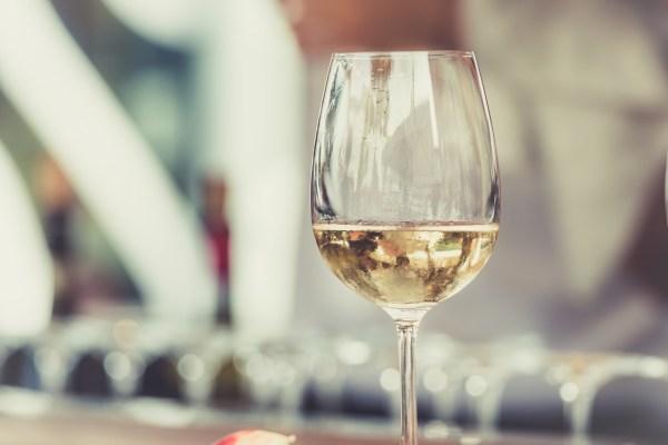 Vegan Wine Tasting