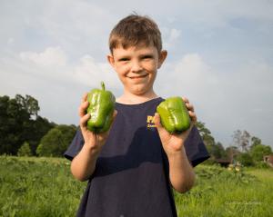Dalton, The Pepper Picker'uper