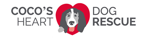 Dog Rescue Dog Bandanas