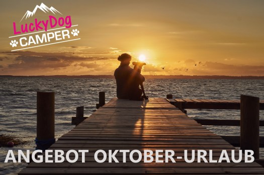 Angebot Oktober Lucky Dog Camper
