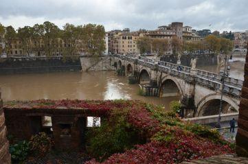 Roma (67)