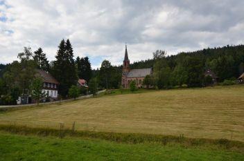 Schwarzwald Tag5 (37)