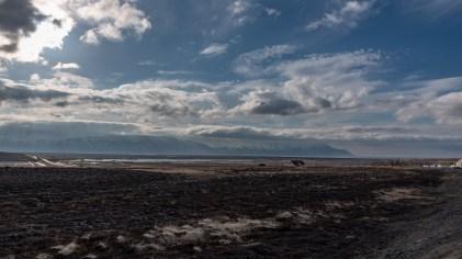 Island - Tag5-26