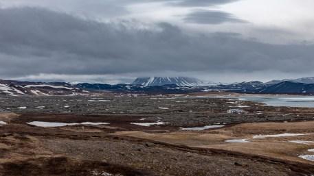 Island - Tag6x-19