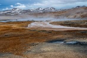 Island - Tag7-26