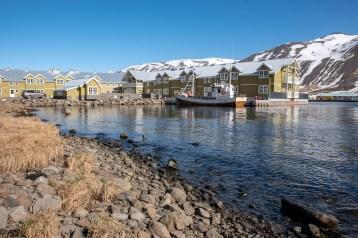 Island - Tag8 (17)