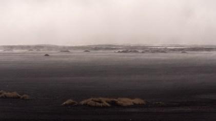 Island - Tag9 (7)