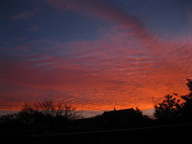 Sunrise - the next day