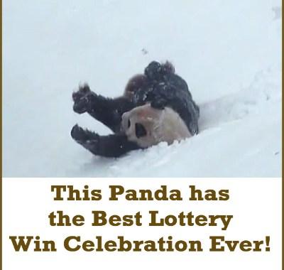 Best Lottery Win Celebration