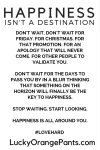 Happiness Isn't a Destination. Don't Wait. Love Hard.