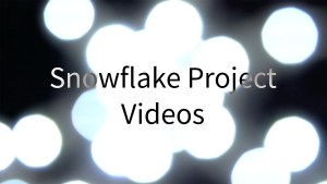 Snowflake Project Videos