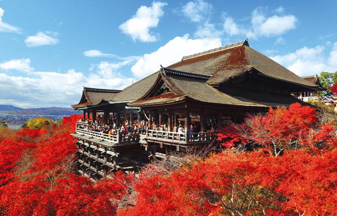 京都でランチを食べるなら!おすすめの安いお店