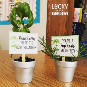 Herb Thank You Gift Tags for Parents Lucky to Be in First