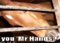 Lucloi.vn_Mr. Hands